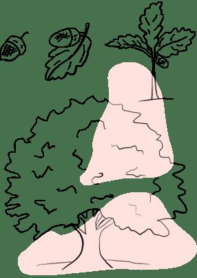 Illustration of plants growing